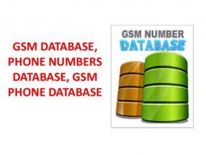 phone numbers in Nigeria and Nigeria phone numbers directory