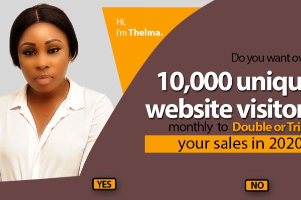 How to get 10,000 unique website visitors monthly and double your sales using an SEO Company in Nigeria